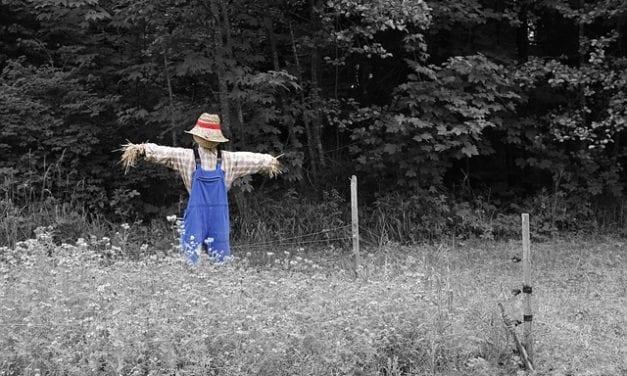 The Scarecrow byPhillip Englund