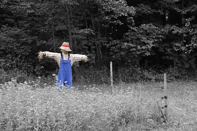 The Scarecrow by Phillip Englund